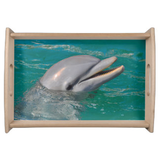 Dolphin Close Up Serving Tray