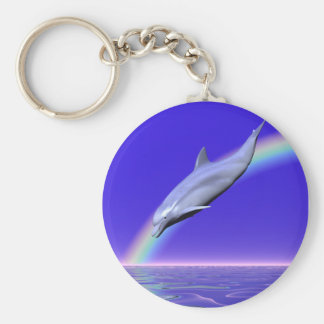 Dolphin Download Key Ring