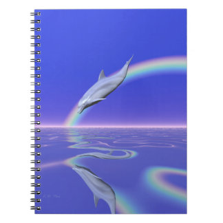 Dolphin Download Notebook