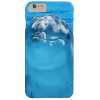 Dolphin face up close phone cover