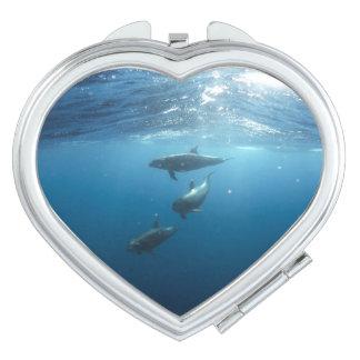 Dolphin Family Makeup Mirror