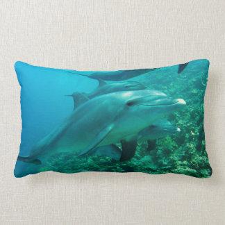 dolphin fish marine ocean under water swim lumbar pillow