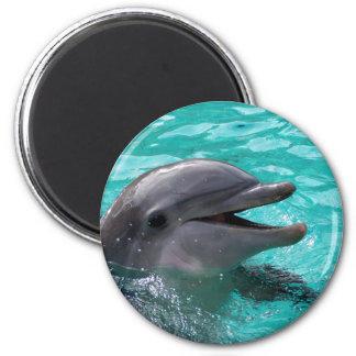 Dolphin head in aquamarine water 6 cm round magnet
