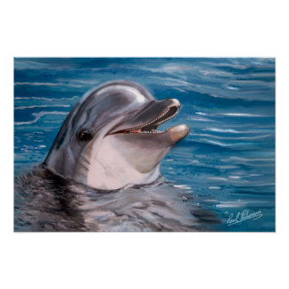 DOLPHIN HEAD POSTER