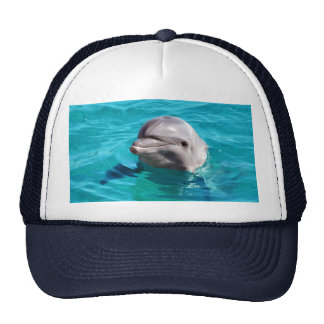 Dolphin in Blue Water Photo Cap