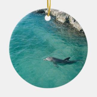 Dolphin in Mexico Ceramic Ornament