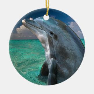 Dolphin in the Bahamas Ceramic Ornament