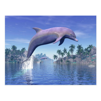 Dolphin in the tropics - 3D render Postcard