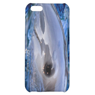 Dolphin iPhone 4G Case Case For iPhone 5C