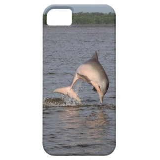 Dolphin iPhone 5/5S iPhone 5 Cases