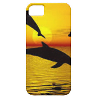 dolphin iPhone 5 case