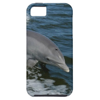Dolphin iPhone-5 Case-Mate
