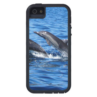 Dolphin iPhone Case iPhone 5 Cover