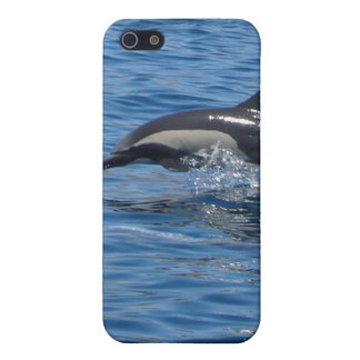 Dolphin iPhone Case iPhone 5 Covers