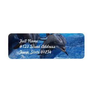 Dolphin Jumping  Mailing Labels