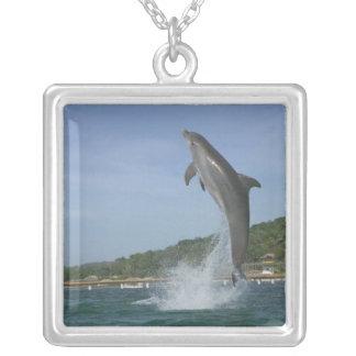Dolphin jumping, Roatan, Bay Islands, Honduras Square Pendant Necklace