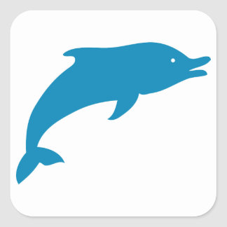 Dolphin Marine Mammals Fish Ocean Blue Animal Square Sticker
