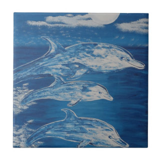 Dolphin Midnight Swim Tile