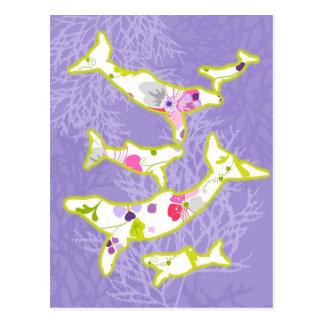 Dolphin on plain violet background. postcard