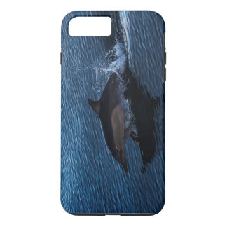 Dolphin Playing off Surfers Paradise iPhone 7 Plus Case