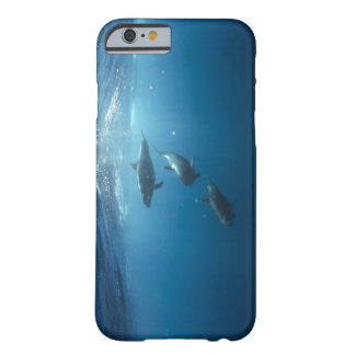 Dolphin pod swimming underwater barely there iPhone 6 case