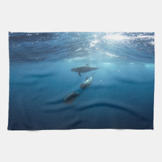 Dolphin pod swimming underwater hand towel