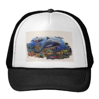 Dolphin Reef Aquatic Hat