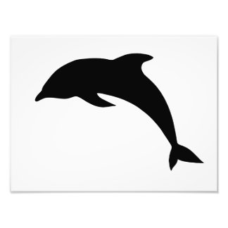 Dolphin Silhouette Art Photo