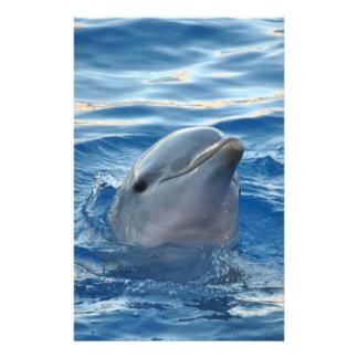 Dolphin Stationery Design