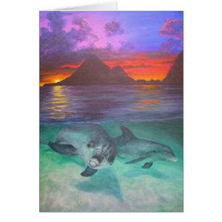 dolphin sunset card