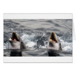 dolphin wave water tropical dive swim Aquatic Life Greeting Card