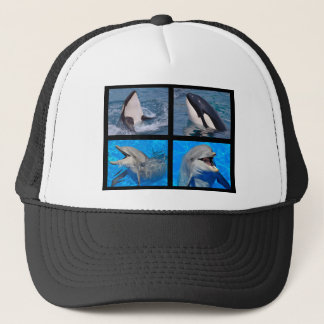 Dolphins and killer whales trucker hat
