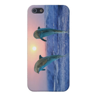 Dolphins at sunrise case for the iPhone 5