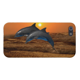 Dolphins at sunset covers for iPhone 5