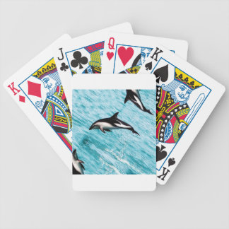 Dolphins Bicycle Playing Cards