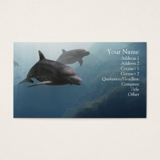 Dolphins Business Card