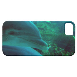 Dolphins iPhone 5 Covers