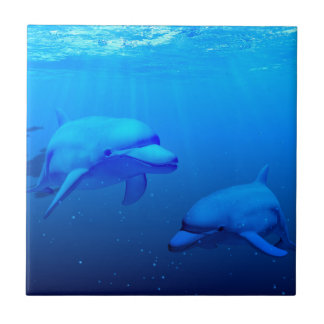 Dolphins Ceramic Tile