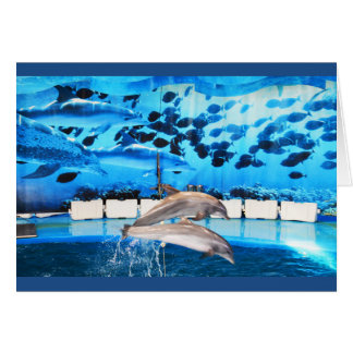 Dolphins in motion greeting card