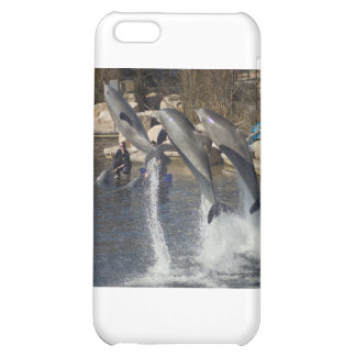 Dolphins iPhone 5C Cases