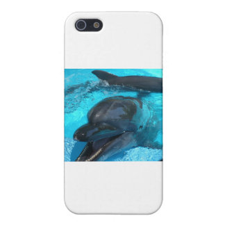 Dolphins Case For iPhone 5