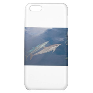 Dolphins Case For iPhone 5C