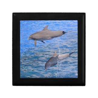 Dolphins jumping out of water gift box