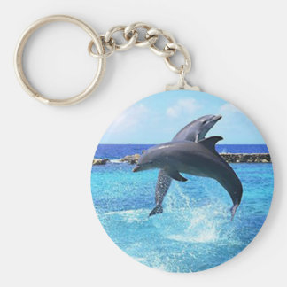Dolphins Key Ring