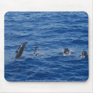 Dolphins ~ Northwest coast of Lanai Mouse Pad
