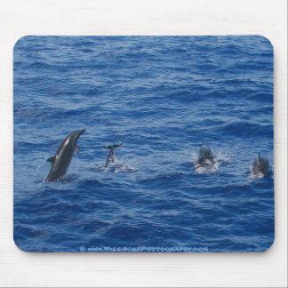 Dolphins ~ Northwest coast of Lanai Mouse Pad