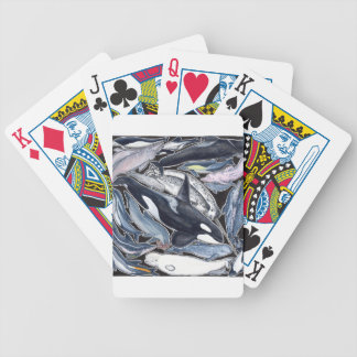 Dolphins, orcas, belugas and narvales bicycle playing cards