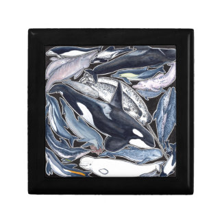 Dolphins, orcas, belugas and narvales gift box