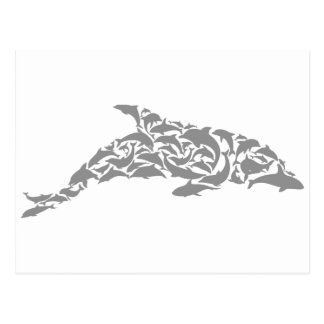 Dolphins Postcard