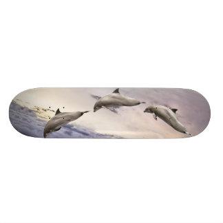 Dolphins Skateboard Deck